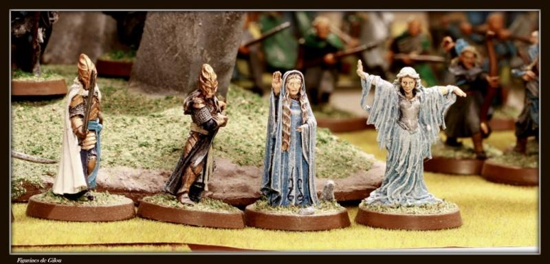 Galerie Elfes du troisième Age Img_7221