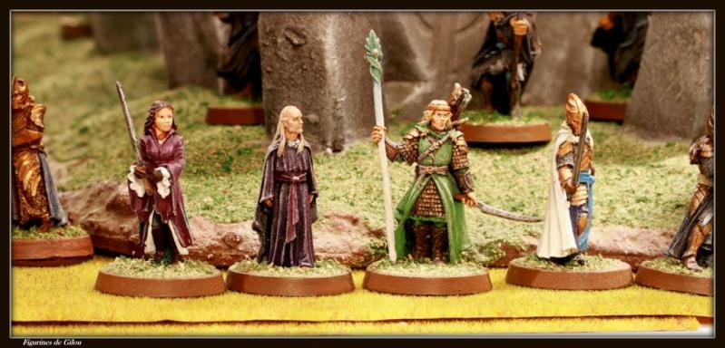 Galerie Elfes du troisième Age Img_7222