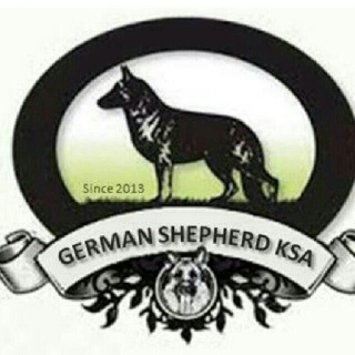 Saudi breeders  |  منتدى مربي الكلاب السعودي