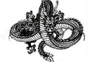 DragonBall 124