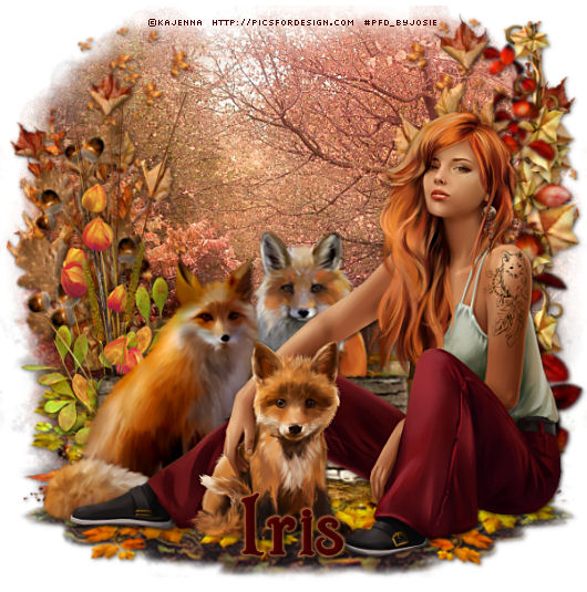 THEME OF THE DAY - Page 2 Autum226