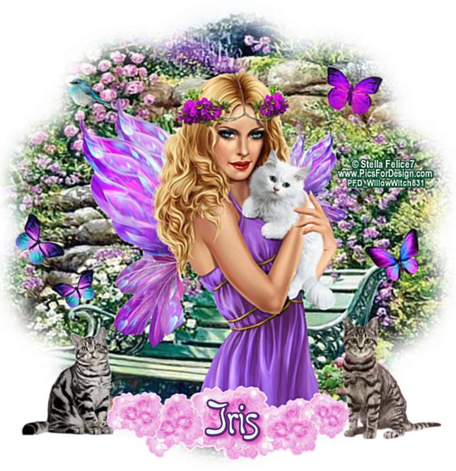 ANGELS/FAIRIES TAGS - Page 2 Fairyf23