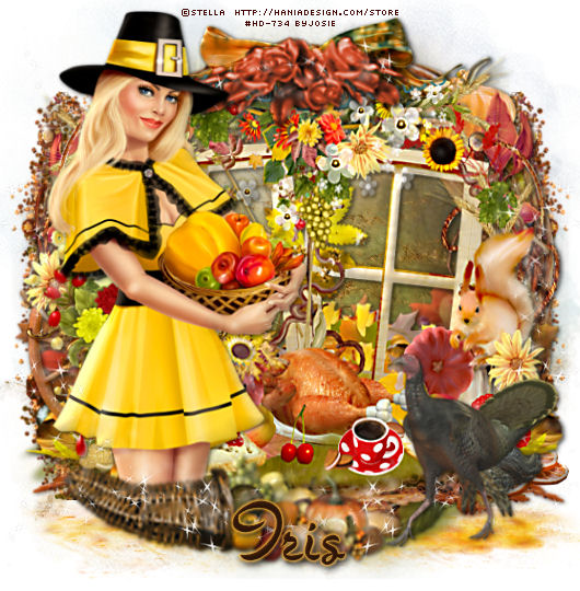SHOW OFF THANKSGIVING TAGS - Page 2 Thanks26