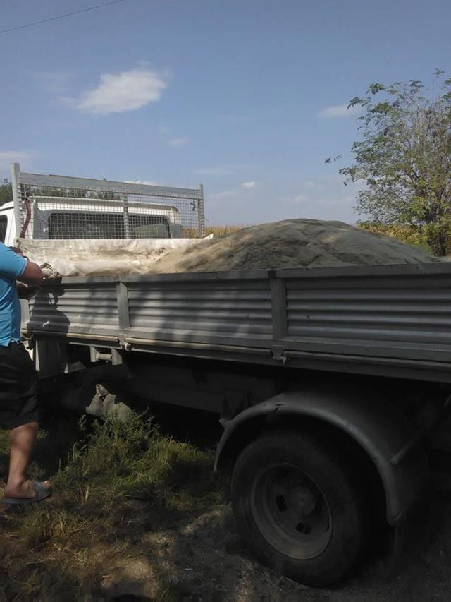 CONSTRUCTION D'UNE PIECE POUR LES CHIENS EN LIBERTE 41840610