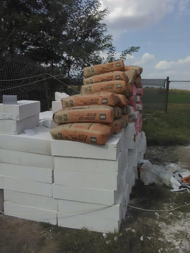 CONSTRUCTION D'UNE PIECE POUR LES CHIENS EN LIBERTE 41897010