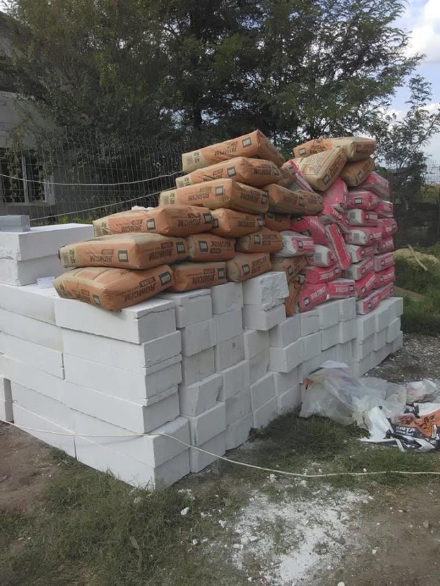 CONSTRUCTION D'UNE PIECE POUR LES CHIENS EN LIBERTE 41952310