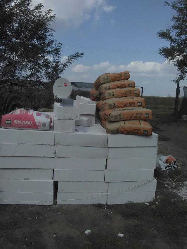 CONSTRUCTION D'UNE PIECE POUR LES CHIENS EN LIBERTE 42059210
