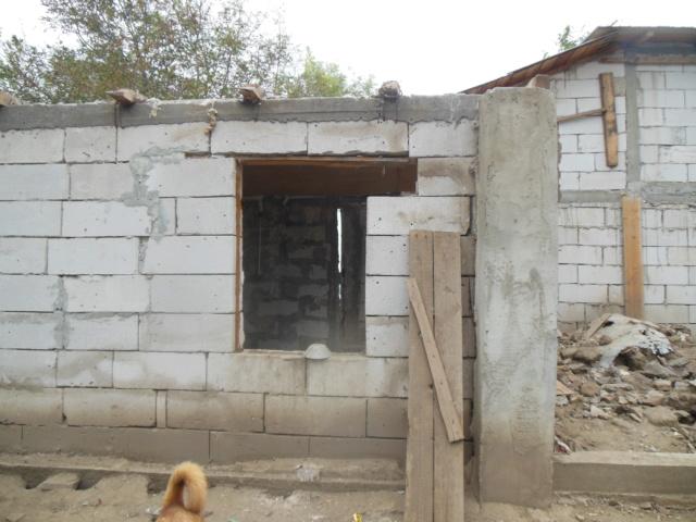 CONSTRUCTION D'UNE PIECE POUR LES CHIENS EN LIBERTE Dscn3011