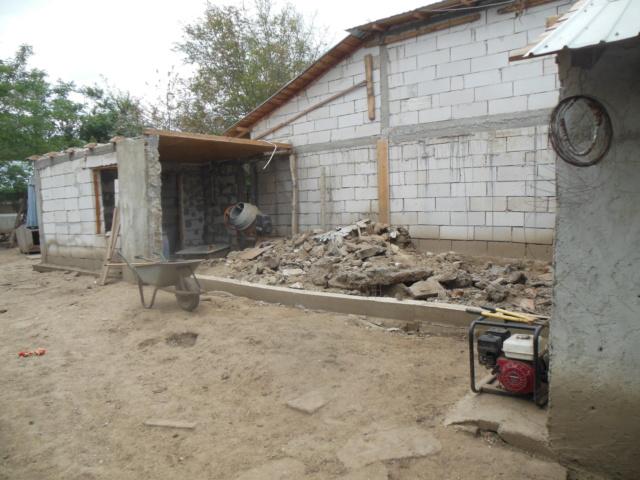 CONSTRUCTION D'UNE PIECE POUR LES CHIENS EN LIBERTE Dscn3014