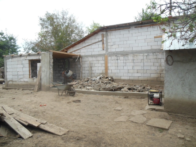 CONSTRUCTION D'UNE PIECE POUR LES CHIENS EN LIBERTE Dscn3015
