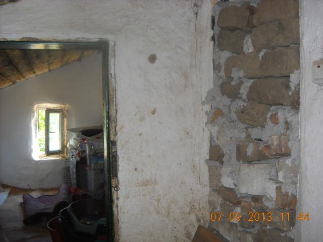 CONSTRUCTION D'UNE PIECE POUR LES CHIENS EN LIBERTE Dscn6010