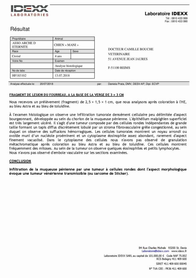MANI NE LE 05/12/2015 PETITE TAILLE EN FA DANS LE 08 - sauvé de l'équarrissage en Décembre 2017- parrainé par Rostagnat -R-SOS-30MA - Page 2 Result10