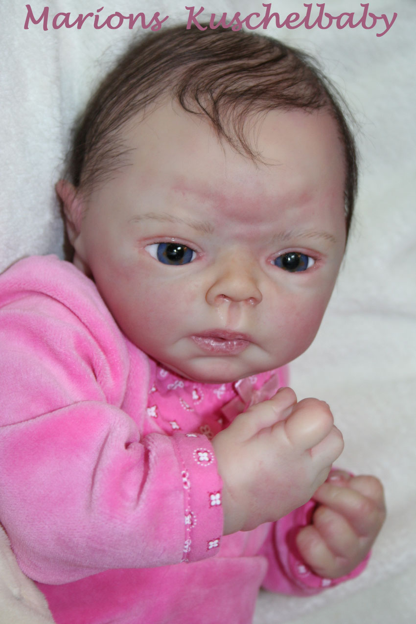 Baby Sammie   . . . .  L. Breedveld Close11