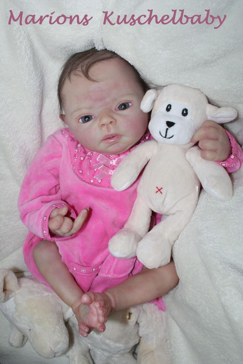 Baby Sammie   . . . .  L. Breedveld Ganz11