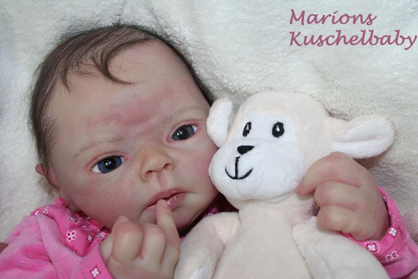 Baby Sammie   . . . .  L. Breedveld Herzig10
