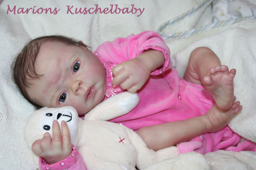 Baby Sammie   . . . .  L. Breedveld Liegt11