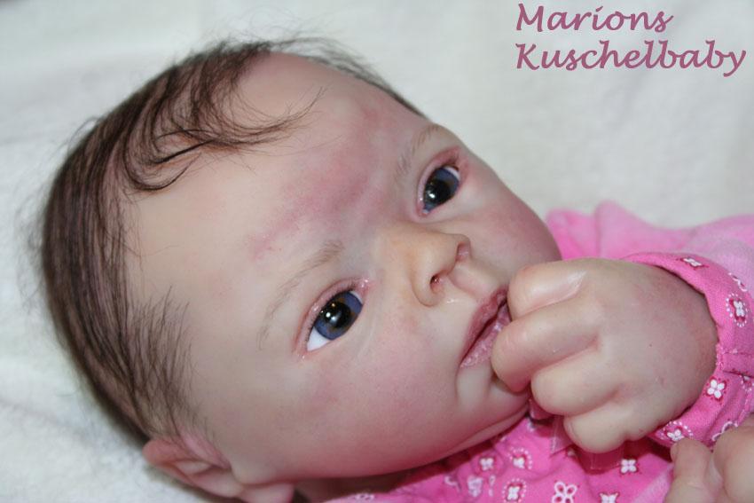 Baby Sammie   . . . .  L. Breedveld Nahe10