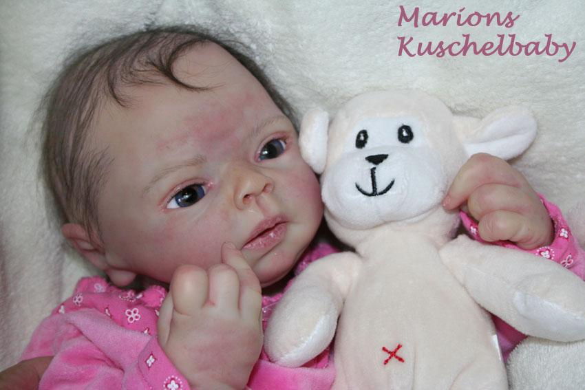 Baby Sammie   . . . .  L. Breedveld Szz11
