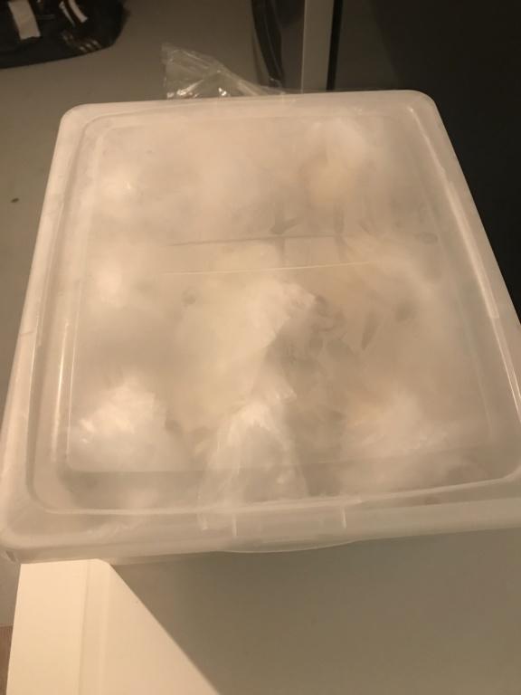 Bac à pâton petit frigo 3acc4810