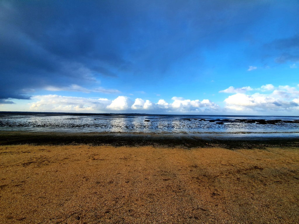 Retour photos de la rando 4x4 en baie de Somme  20200131