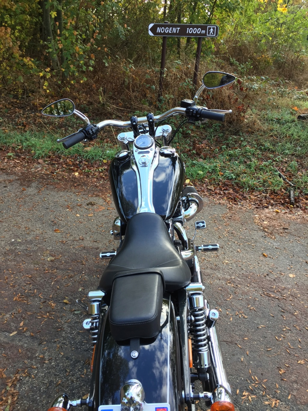 DYNA WIDE GLIDE, combien sommes-nous sur Passion-Harley - Page 41 Fdadcb10