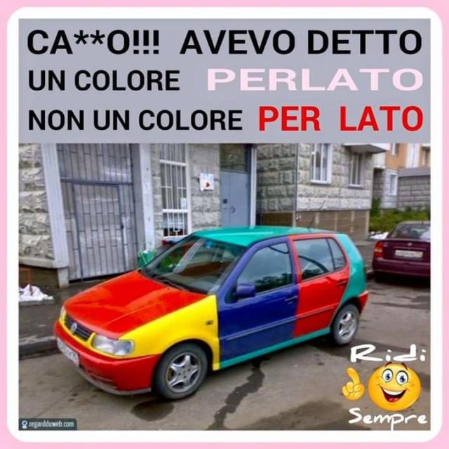 VW Polo Harlekin Un_col10