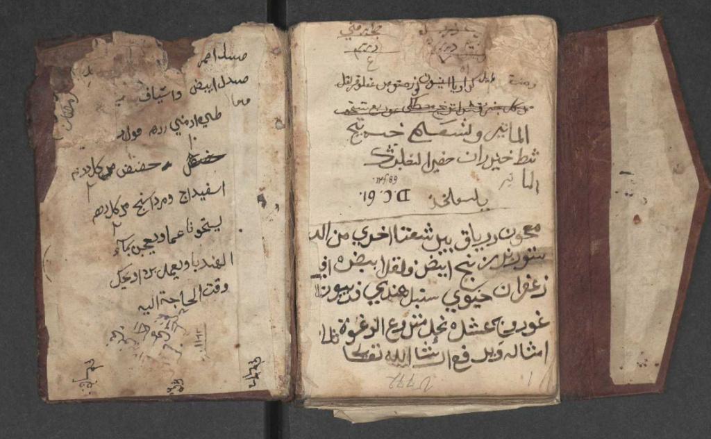 مخطوط شرح اسماء الادويه والاعشاب نادر O10