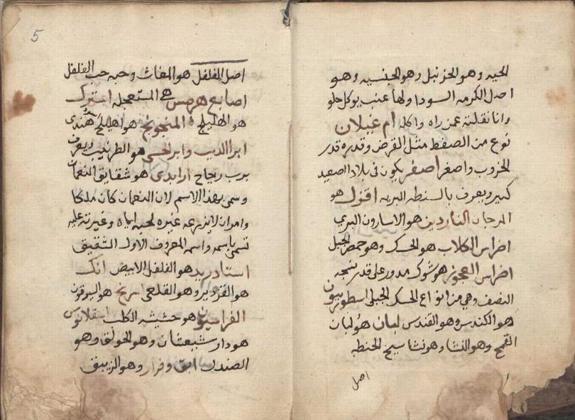 مخطوط شرح اسماء الادويه والاعشاب نادر O210