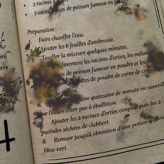 Introduction : les outils du potionniste - Page 8 Recett10
