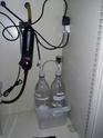 Lancement d'un 180 litres pour Guppys Img_2011