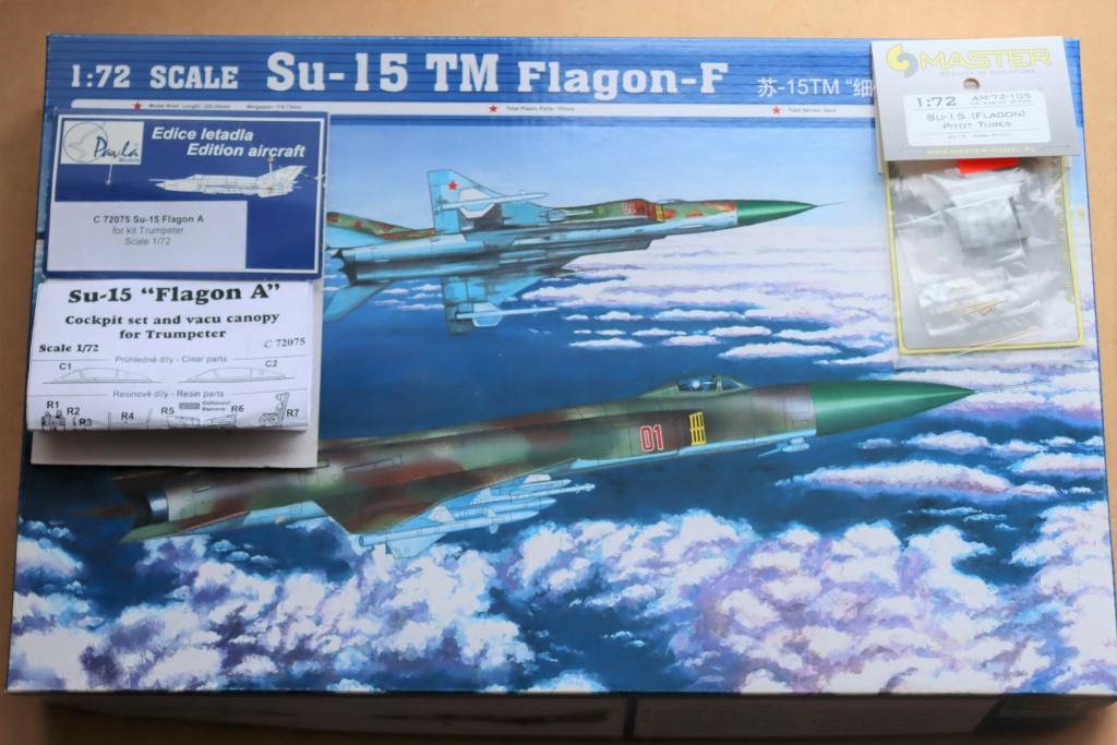 SUKHOI SU 15 TM flagon F ( Trumpeter 1/72)  Img_0233