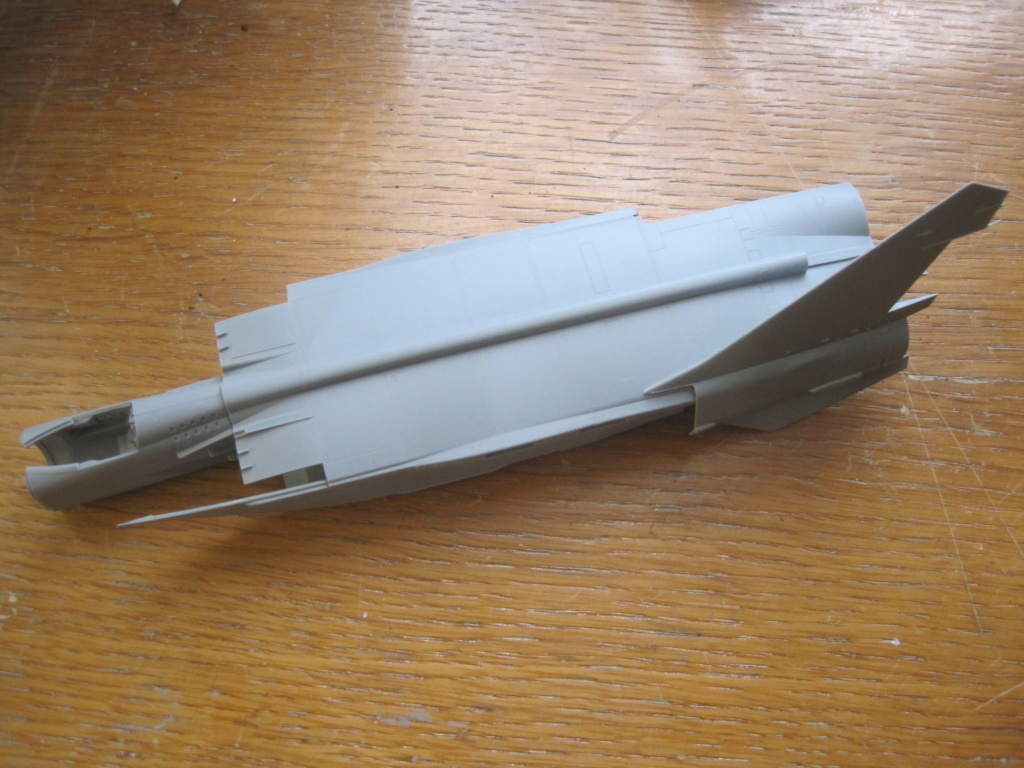 MIG 25 RB (1/72 ICM) - Page 2 Img_8750