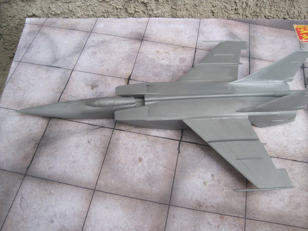 MIG 25 RB (1/72 ICM) - Page 4 Img_8835