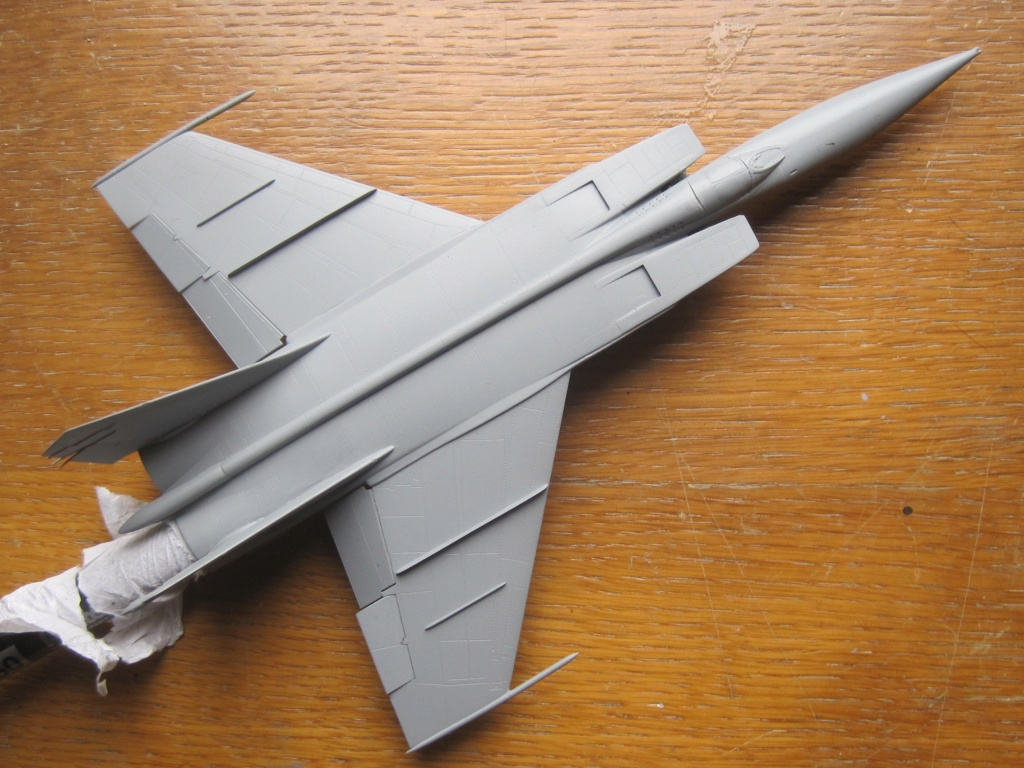 MIG 25 RB (1/72 ICM) - Page 4 Img_8841