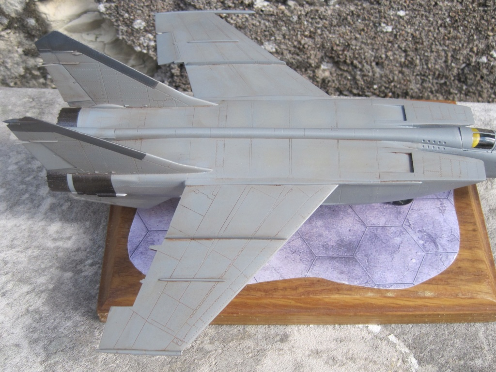 MIG 25 RB (1/72 ICM) - Page 5 Img_8860