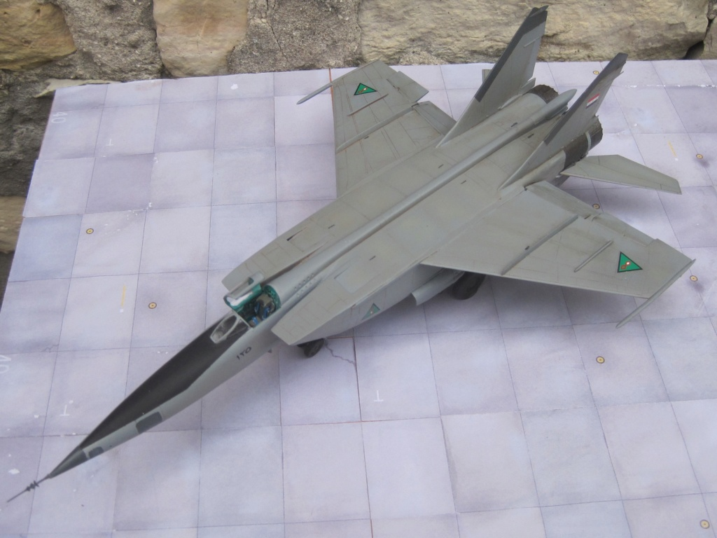 MIG 25 RB (1/72 ICM) - Page 6 Img_8871