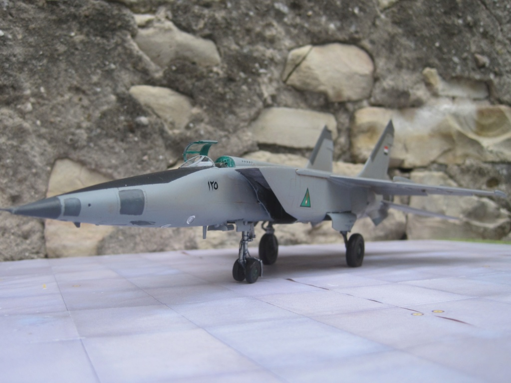 MIG 25 RB (1/72 ICM) - Page 6 Img_8873