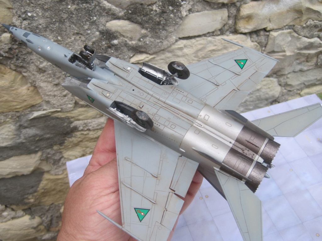MIG 25 RB (1/72 ICM) - Page 6 Img_8910