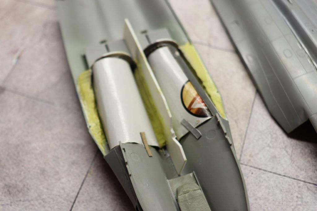 RAFALE - dernière monture du Normandie Niemen (1/48 MUSTHAVE) Img_9446