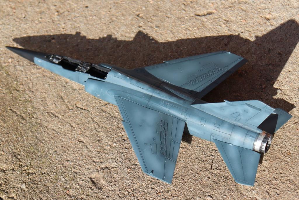 Mirage F1 B NORMANDIE NIEMEN ( special hobby 1/72) fini p4 - Page 2 Img_9550