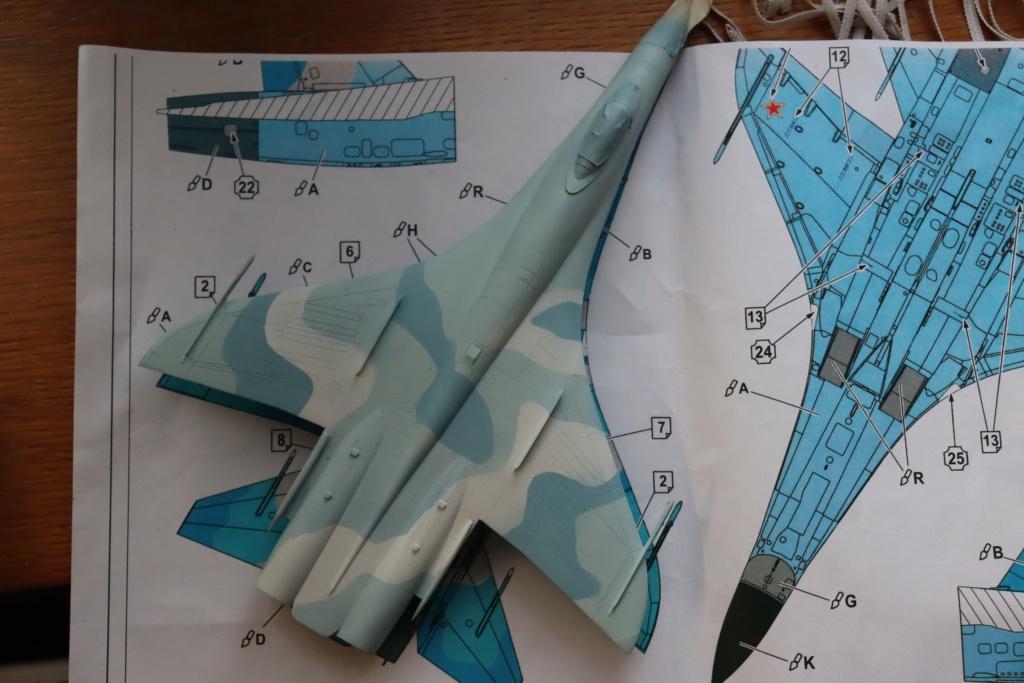 Sukhoi T10 (MODELVIST 1/72) - Page 3 Img_9557