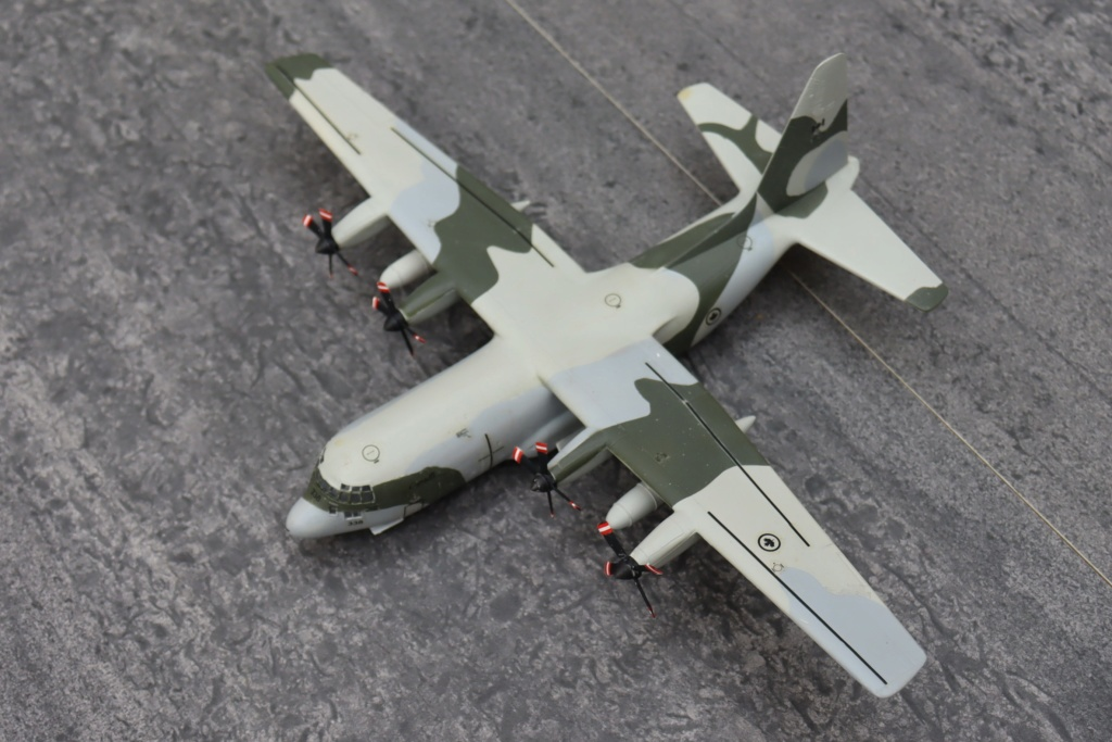 Lockheed C130 HERCULES - Page 2 Img_9654