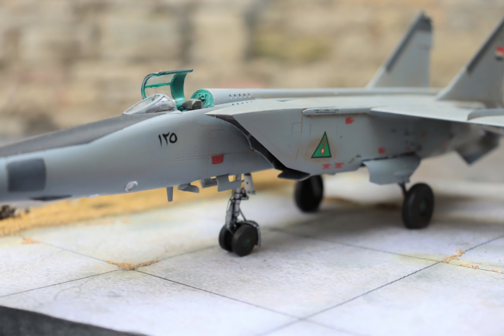 MIG 25 RB (1/72 ICM) - Page 6 Img_9662
