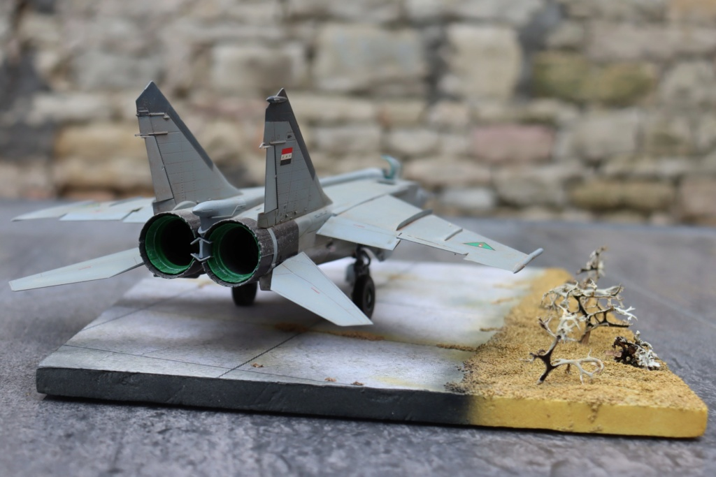 MIG 25 RB (1/72 ICM) - Page 6 Img_9663