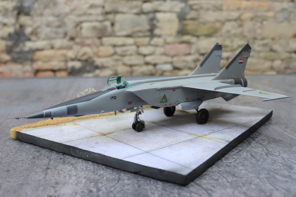 MIG 25 RB (1/72 ICM) - Page 6 Img_9664