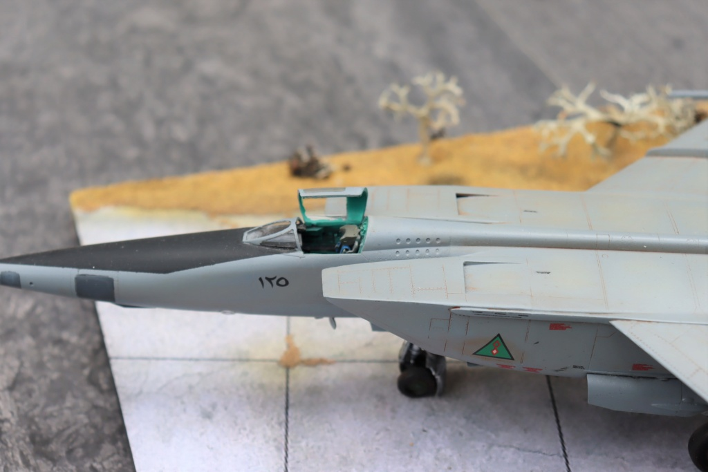 MIG 25 RB (1/72 ICM) - Page 6 Img_9665