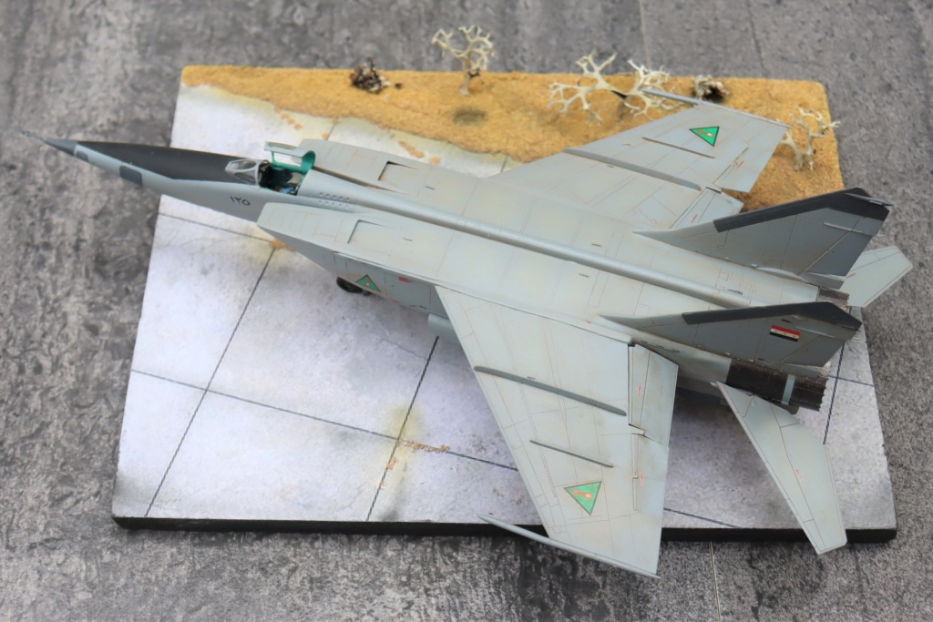 MIG 25 RB (1/72 ICM) - Page 6 Img_9666