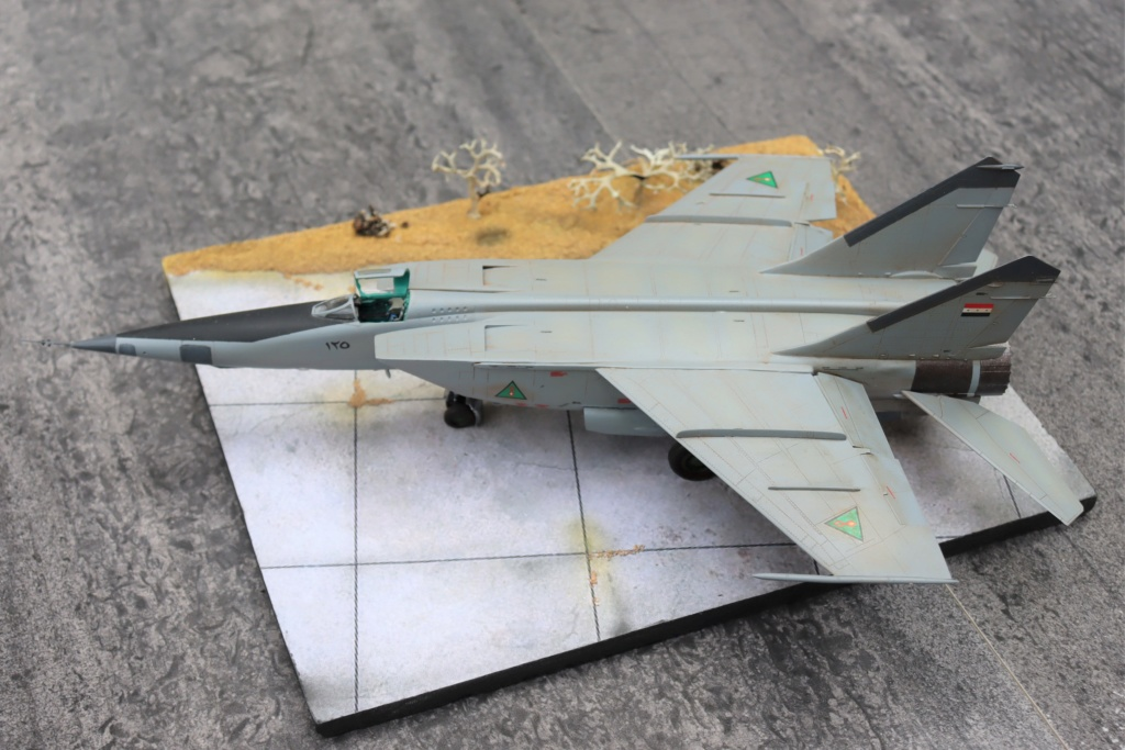 MIG 25 RB (1/72 ICM) - Page 6 Img_9667