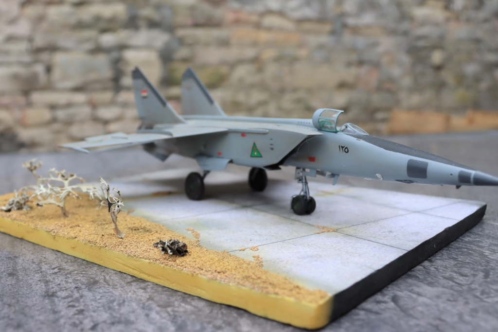 MIG 25 RB (1/72 ICM) - Page 6 Img_9668