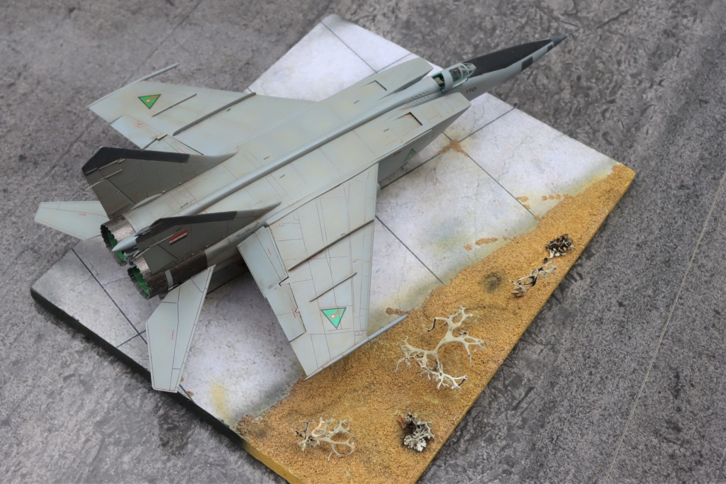 MIG 25 RB (1/72 ICM) - Page 6 Img_9669